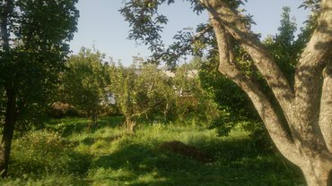 Продается дом на Южном берегу Иссык - в Боконбаево