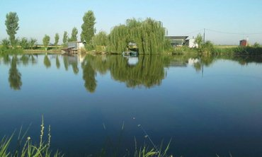 Участок - пруд. аламединский район. в Бишкек