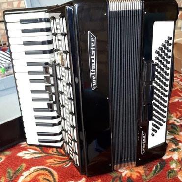 Германский аккордеон с чемоданом в Балыкчы