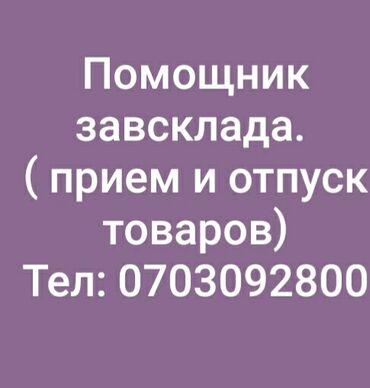 Старший системный администратор - Кыргызстан: Помощник завскладом. С опытом. 5/2