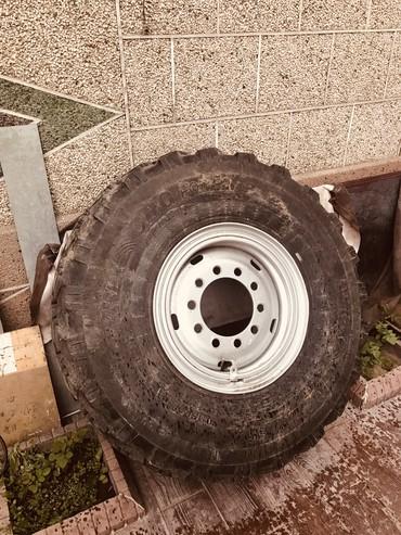 Куплю Колесо Камвз Вездеход или колесный диск в Кант