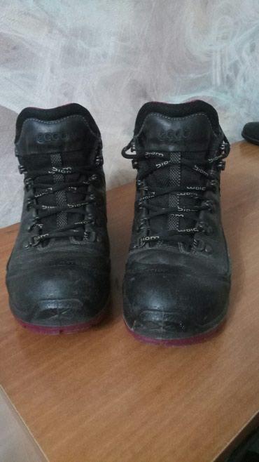 Продаю Мужские кожанные ботинки Wrangler в Бишкек