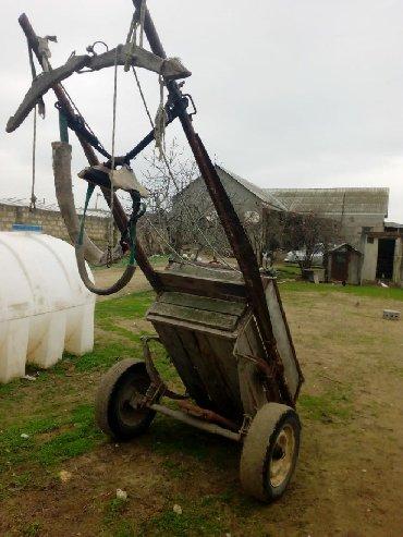 at satisi azerbaycan - Azərbaycan: At arabası
