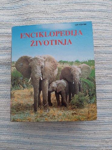 Knjige, časopisi, CD i DVD | Zrenjanin: Enciklopedija zivotinja veoma dobra i poucna stvar za vasu decu