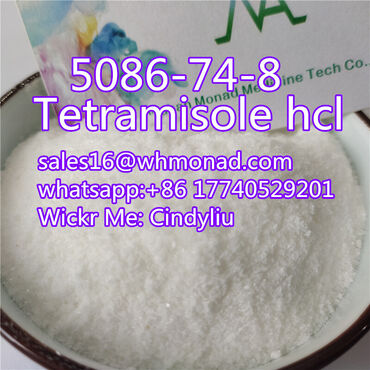 Hot selling Tetramisole hcl powder CAS 5086-74-8 with factory price