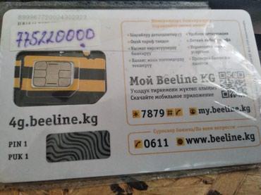 Beeline. сим карта. в Кызыл-Кия