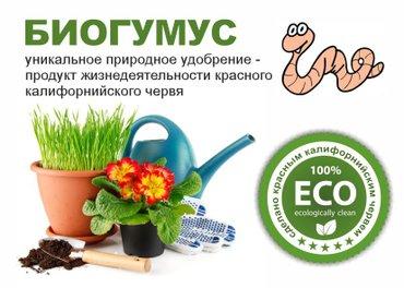 Продаю биогумус. продукт жизнедеятельности калифорнийского червя