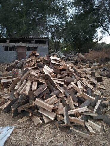 1083 объявлений: Дрова оптом и в розницу. отун #сухие дрова# кургак отун 1 куб