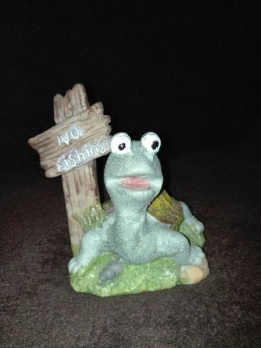 Kornjaca za akvarijum - Kragujevac