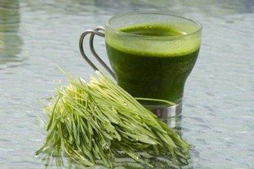 Sok od spelte (triticum spelta) je hladno ceđeni sok iz zelenih - Beograd