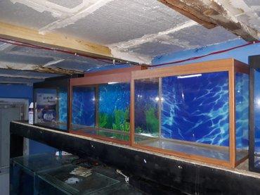 Bakı şəhərində teze akvariumlar 30 litre  uzunu 50 sm hundurluyu qapaqla 35 sm eni 20