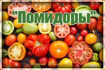 Все для дома и сада - Сокулук: Продаю Коллекционные семена томатов! Эксклюзивные сорта,на все случаи
