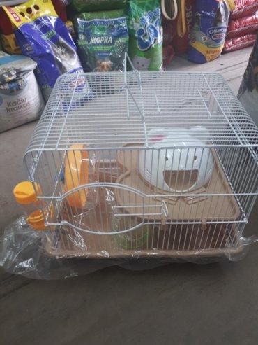 Клетка для хомяка в Бишкек