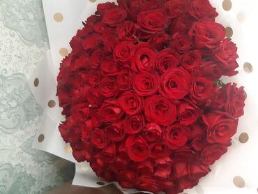 101 роза, все будотеы свежие