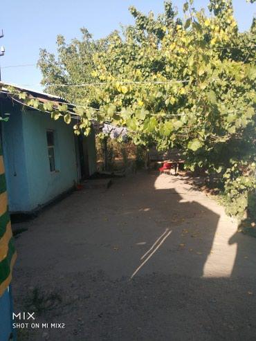 Продаю дом село достук первая линия, в Бишкек