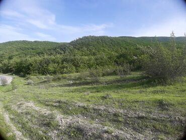 Torpaq sahəsi satılır 12 sot Tikinti, Mülkiyyətçi, Kupça (Çıxarış)