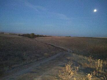 Земельные участки - Нарын: Продам 8 соток Для сельского хозяйства от собственника