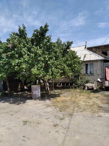 готовый бизнес общепит в Кыргызстан: Продаю готовый 8 квартирный бизнес совсем условиям в каждом квартиры д