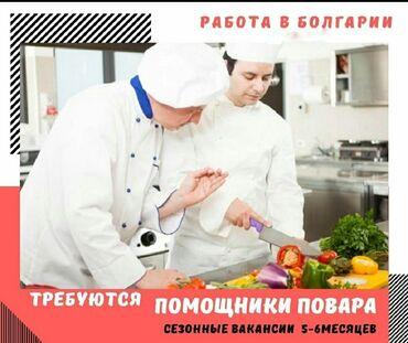 Торговый представитель вакансии - Кыргызстан: Болгария. Отели, кафе, рестораны. 6/1