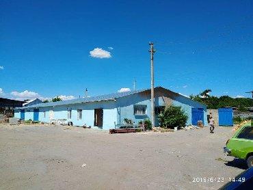 Недвижимость - Маевка: Сдаю помещения в Маевке 300м2-35000сом,680м2-55000сом 144м2+ навесом
