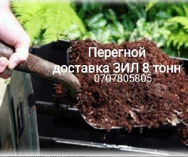 садовые растения в Кыргызстан: Перегнойная земля, илиНавозный перегной,— земляная смесь