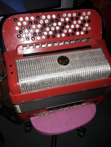 Harmonike - Srbija: Prodajem Dalape harmoniku,dugmetaru,cetvoroglasnu,120 basova,rucni rad