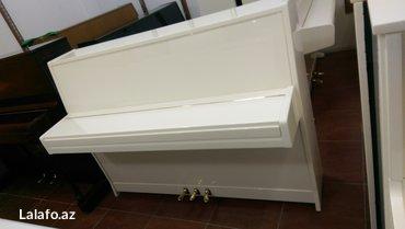 Bakı şəhərində Çexiya  istehsalı 3 pedallı professional pianino satılır. 5il zemanet- şəkil 4
