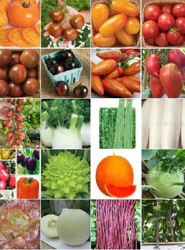 Семена ОВОЩЕЙ: помидоры' огурцы' перец' баклажан' салат' горох и