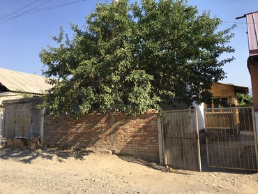Недвижимость - Кызыл-Кия: 120 кв. м, 4 комнаты