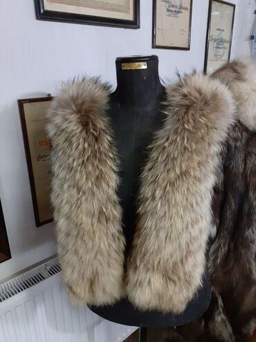 Krzneni kaputi - Sremska Mitrovica: Krzno za kapuljacu Finski rakun duga dlaka Duzina 78 cm