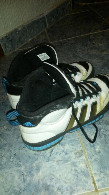 Patike 43 - Srbija: Adidas patike br.43.Malo požutele od stajanja inače u dobrom stanju