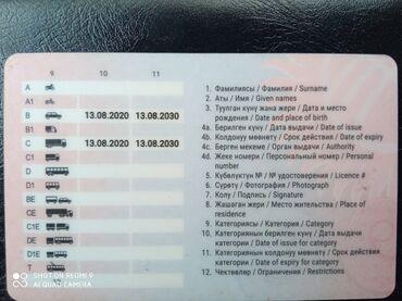 Работа - Новопавловка: Ищу работу водителя вс категория