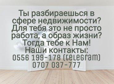 Недвижимость в Кыргызстан: Агентство Недвижимости  «Д. Сити» приглашает в свою команду риэлторов