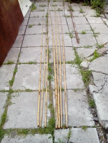 Бамбуковые уделища,длинна 3,5 м и 4,5 м,цена 100-150 сом в Бишкек