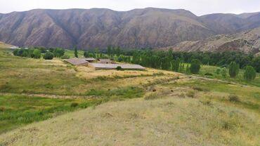 мал-сарай в Кыргызстан: Сарай Талас облусу Кенкол ороонундо оканчательно 40мин$