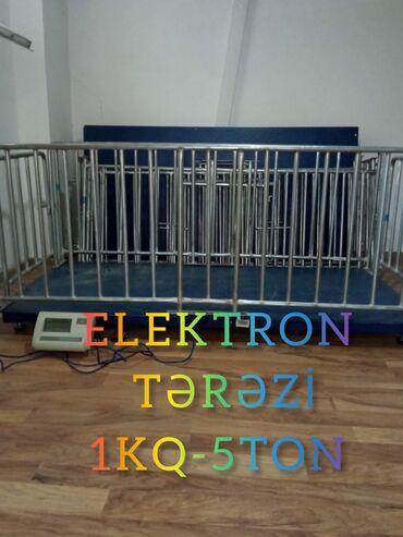 Elektron tərəzi.Ağır çəkili heyvanlar üçün elektron tərəzi.Kənd