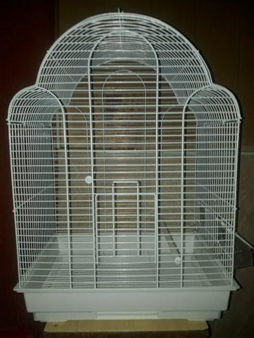 сетка от птиц в Кыргызстан: Клетки для птиц есть разные виды от 800 сомов и выше