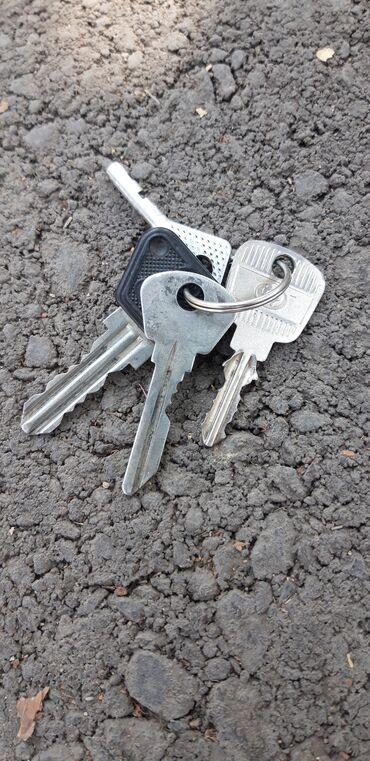 Найден ключи ул: Л толстого Баха