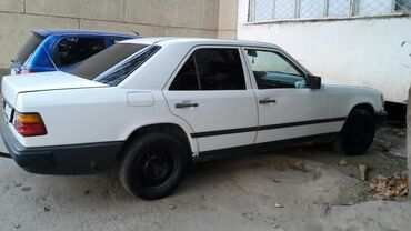 Mercedes-Benz 230 2.3 л. 1989 | 250 км