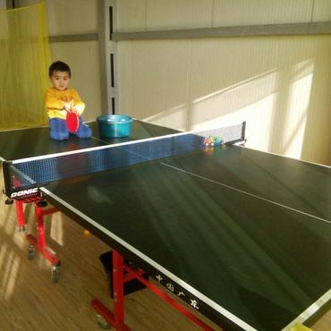 Тренировки индивидуально.Настольный в Бишкек