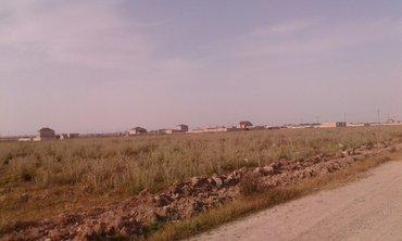 Bakı şəhərində Torpag  satilir  Meshtaga qesebesinde  cileger massivinde 11 hektar