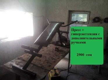 Пресс+гиперэкстензия  на заказ по в Бишкек