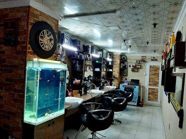 kisi salonu - Azərbaycan: Kisi Salonu