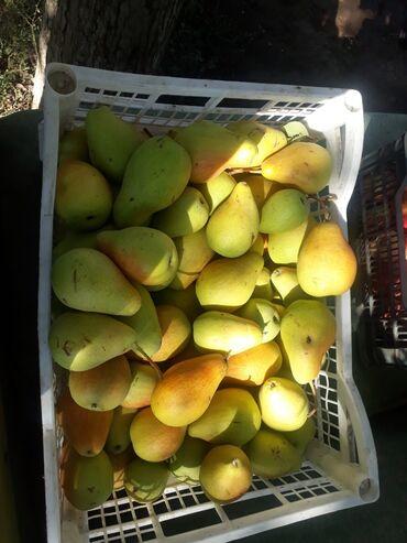 149 объявлений: Овощи, фрукты