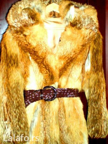 Prirodno krzno bunda iz celih ledja kanadske lisice sa kapuljacom-novo - Beograd