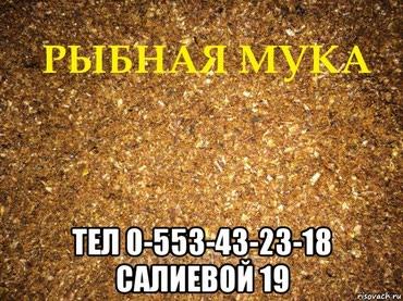 РЫБНАЯ МУКА РОССИЯ в Бишкек