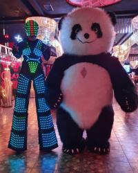 panda sou - Azərbaycan: Panda şou sifariwiSızde ad gunu tiy ve ya hansisa tedbirinizin maragli