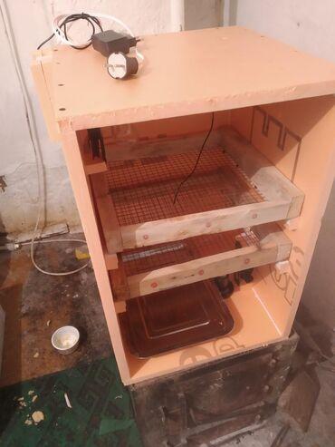 Животные - Кыргызстан: Инкубатор вместимость 90 яиц. Новый, не использовался. И делаю на