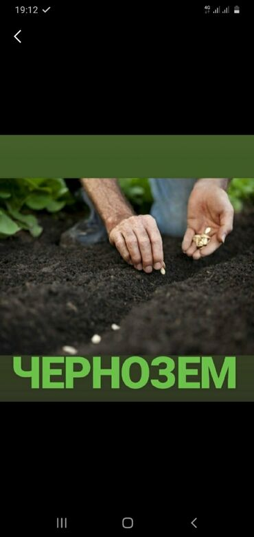 Теплицы - Кыргызстан: Чернозём чернозём чернозём горный рыхлы без сорняков и мусора