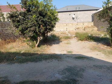 910 elan | DAŞINMAZ ƏMLAK: 3 sot, Kənd təsərrüfatı, Mülkiyyətçi, Kupça (Çıxarış)